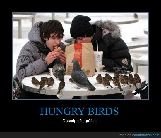 Andry birds,comida,hambre,Hungry Birds,mcdonalds