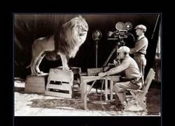 Enlace a LEÓN DE LA MGM