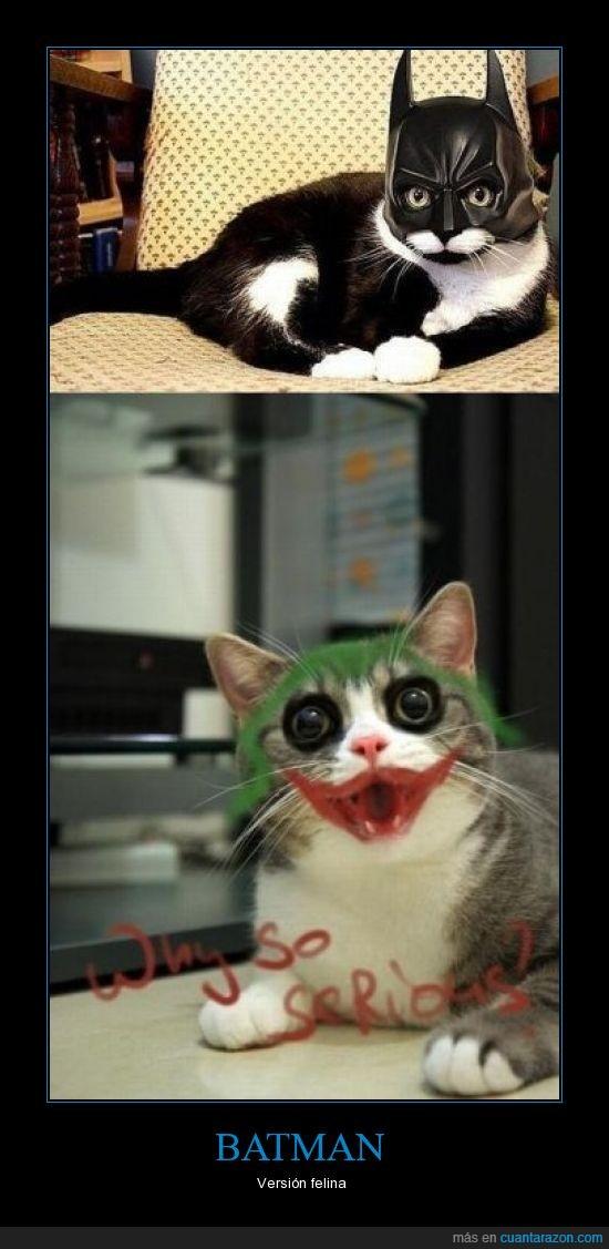 batman,gato,maquillaje,nivel