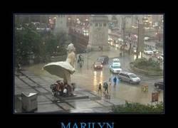 Enlace a MARILYN