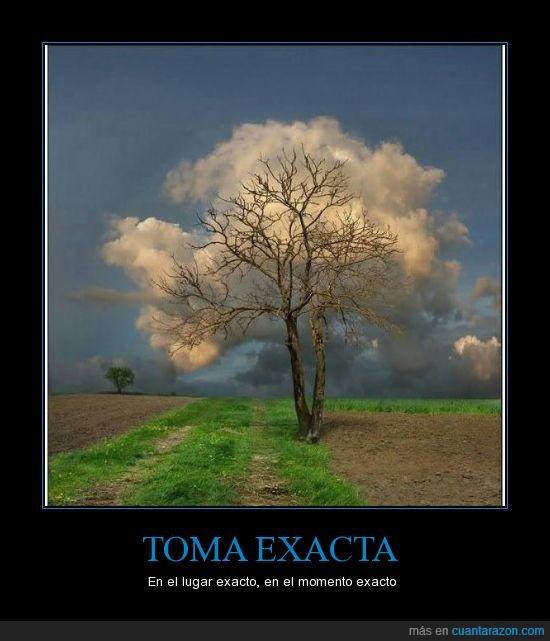 arbol,foto,nube