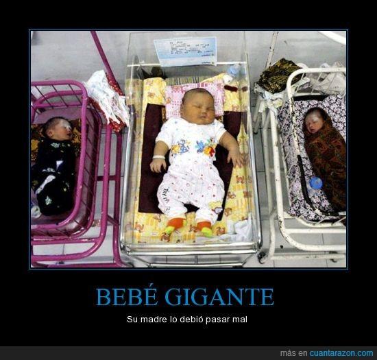 bebe,gigante,madre