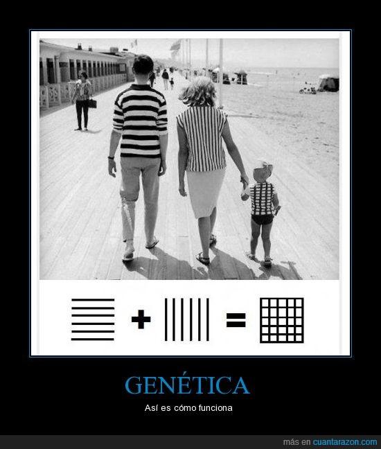 Genética,mejor nota,niños,padres,rayas