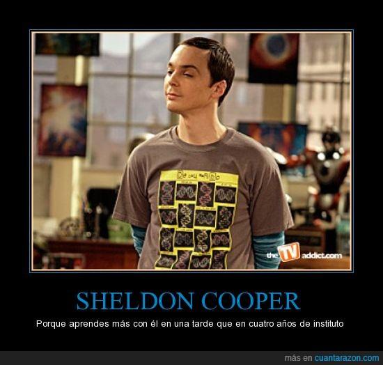 años,aprender,cooper,friki,instituto,sheldon,tbbt,the big bang theory
