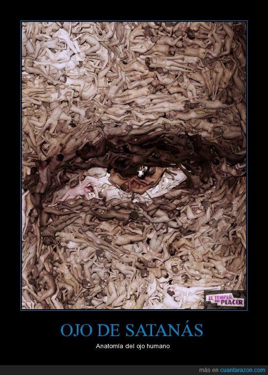 anatomía del ojo,cuerpos,ojo,personas