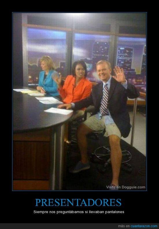 bermudas,noticias,pantalones,presentadores,tv