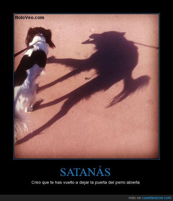 maligna,perro,perro del infierno,satanás,sombra