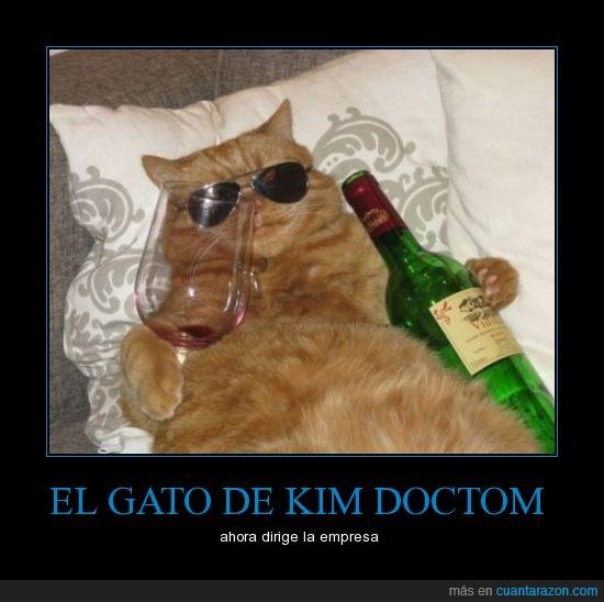 cool,empresa,gafas,gato,kim dotcom,megaporn gatuno,megavideo,vino