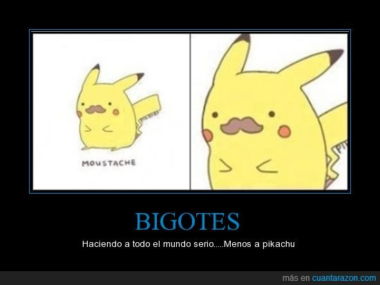 bigote,pikachu,seriedad