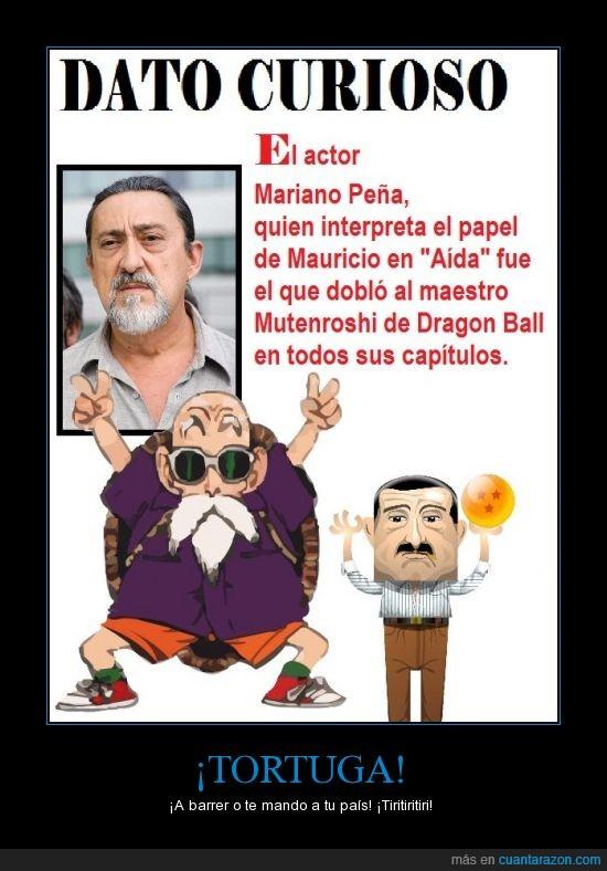 dragon ball,mariano peña,Mauricio,mutenroshi,tortuga