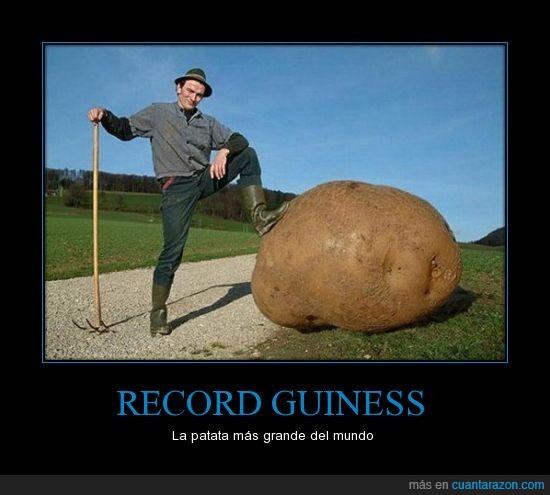 gigante,grande,guiness,Mcdonalds,palurdo,patata,record