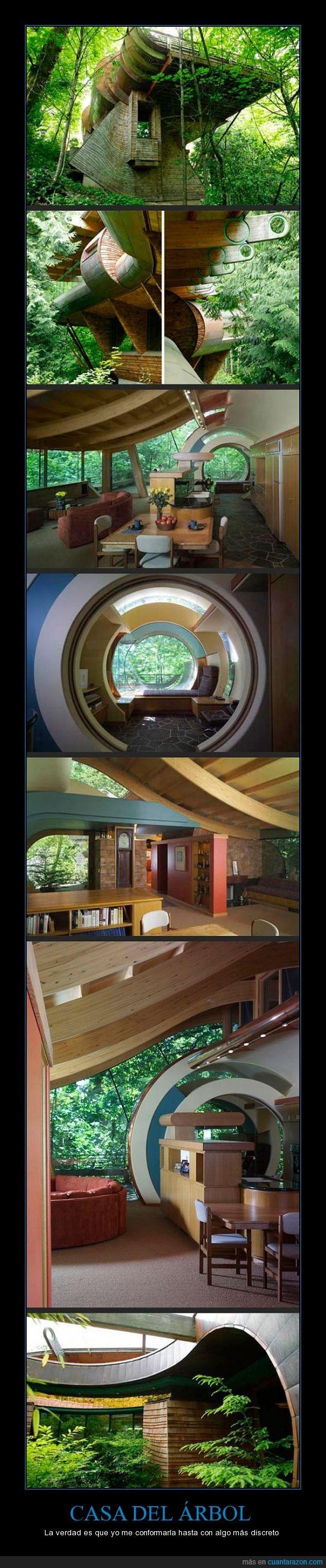 árbol,cabaña,casa,impresionante