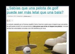 Enlace a TIGER WOODS