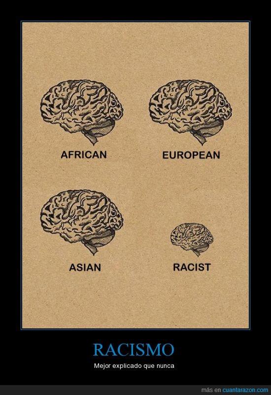 cerebros,racismo,tamaño,verdad,win