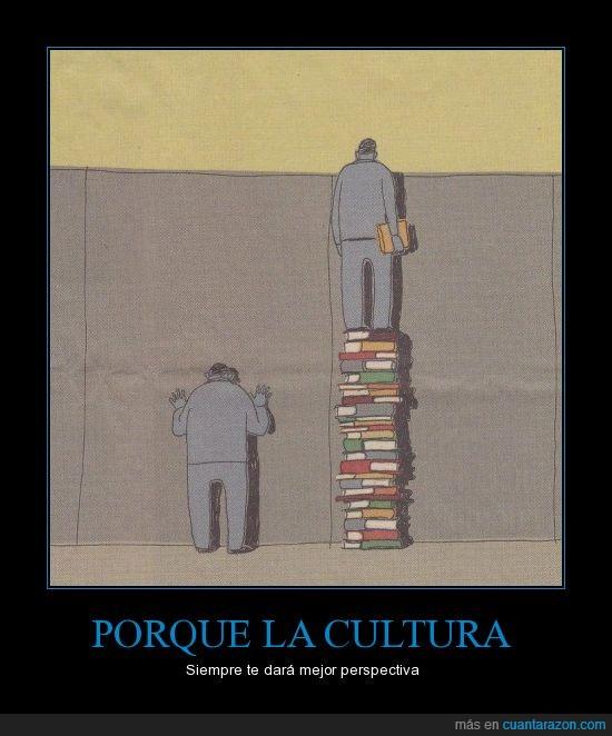 cultura,encima,libros,muro,perspectiva,ver
