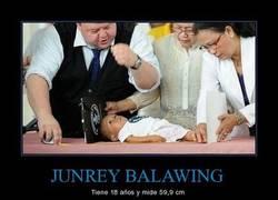 Enlace a JUNREY BALAWING