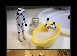Enlace a STORMTROOPERS