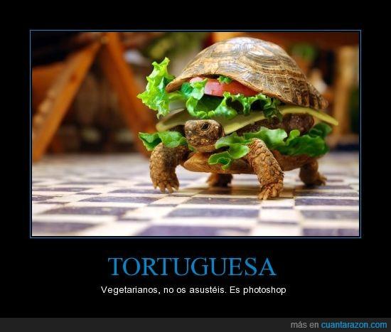 hamburguesa,montaje,photoshop,tortuga