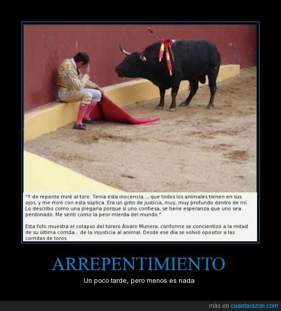 animales,españa,justicia,Toreros
