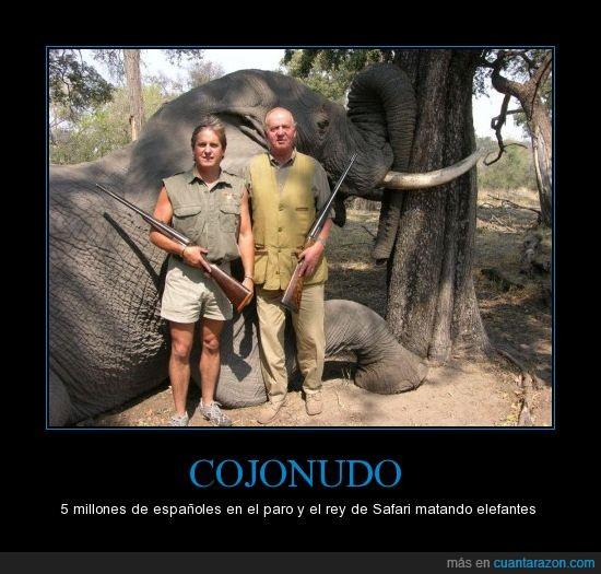 elefante,monarquía,rey,rotura de cadera,safari