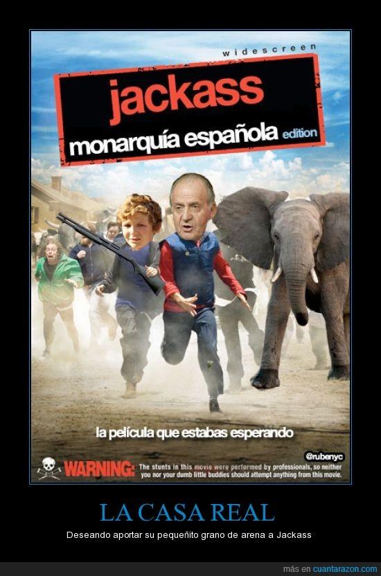 botswana,crisis,elefantes,jackass,monarquía,rey,safari