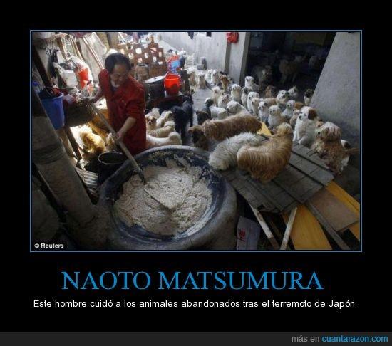 animales,cuidador,japón,terremoto