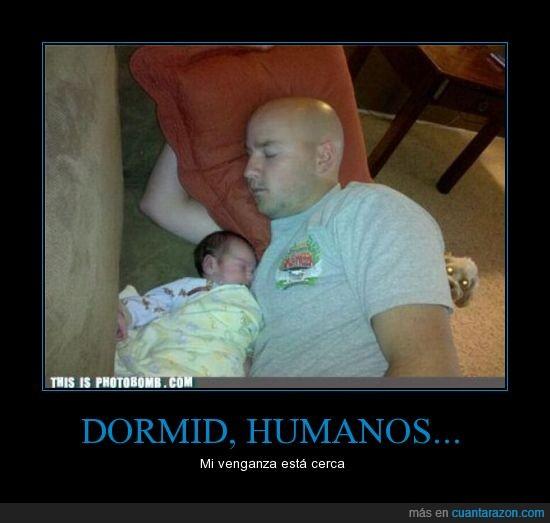 bebé,criatura del inframundo,hombre,perro,venganza