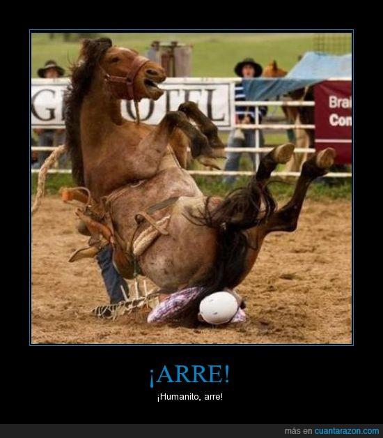caballo,enésima,persona,rodeo,tonto