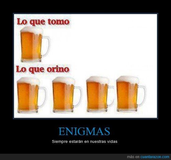 birra,cerveza,enigmas,jarra,vaso