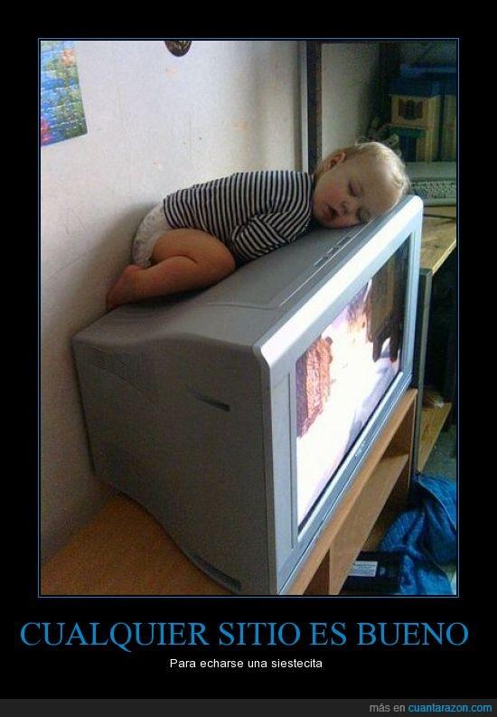 bebe,dormir,gato,televisión