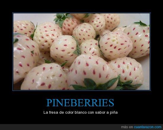 blanco,fresas,piña,pineberry,sabor