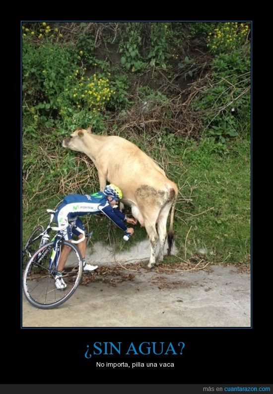 agua,bicicleta,ciclista,it's free,leche,ordeñar,Vaca