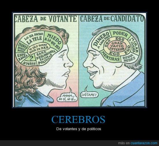 cabeza,cerebros,diferente,dinero,miedo,politico,votantes