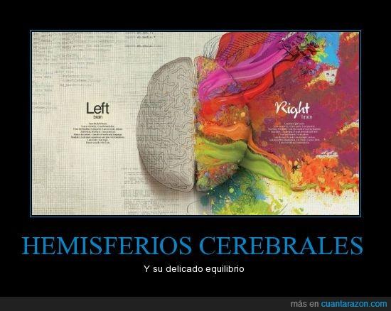 cerebro,hemisferios