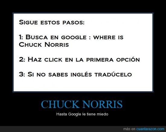 búsqueda,Chuck Norris,dónde está,google,resultado