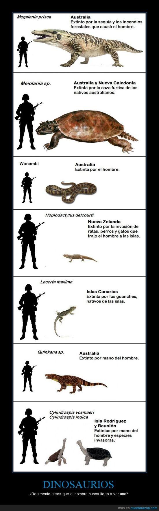 Dinosaurios,megalania,meiolania,quinkana,reptiles,wonambi