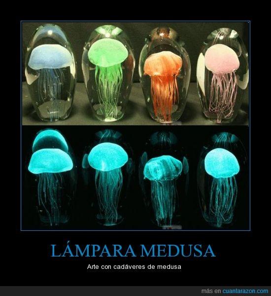 arte,lampara,medusa