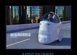 Enlace a MINI NORRIS