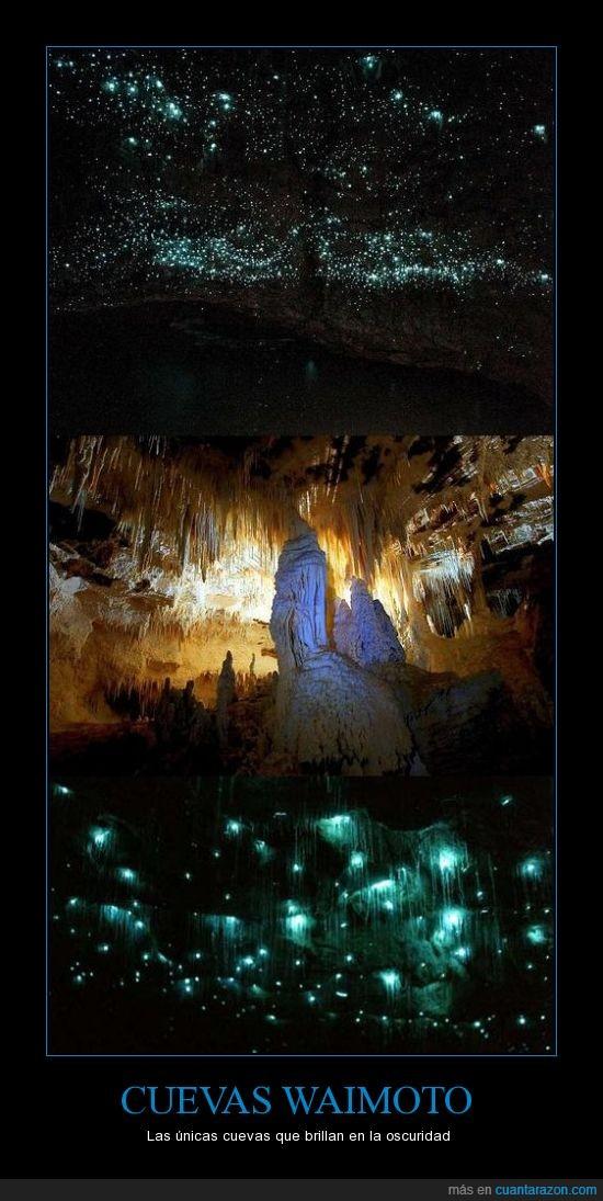 brillar en la oscuridad,cuevas,extraños,nueva zelanda,paisajes,paisajes raros,waimoto