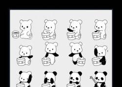 Enlace a CÓMO SER UN PANDA