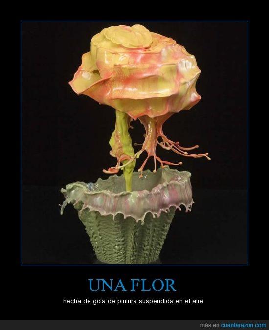 flor,pintura,suspendida