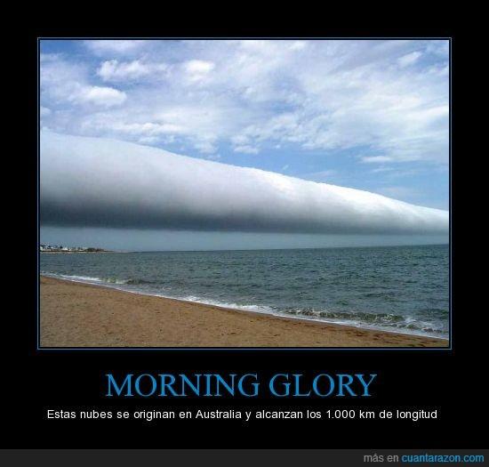 Australia,curiosidades,mil kilómetros,morning glory,nube,nube gloria por la mañana
