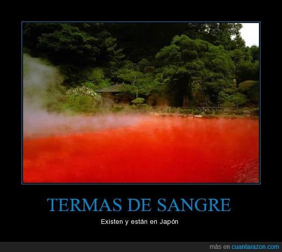 agua,Japón,sangre,termas
