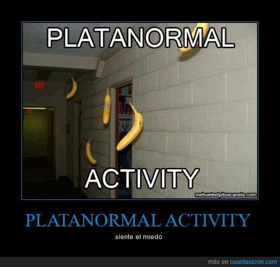 activity,bananas,paranormal,platanos,vuela
