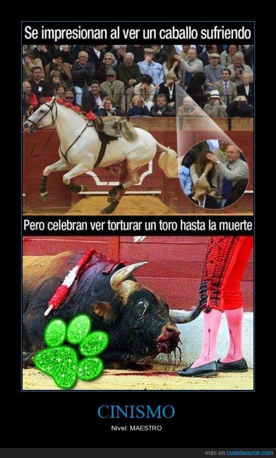 asesinos,caballos,cinismo,muerte,sufre,tauromaquia,toreo,torero,toros,ver