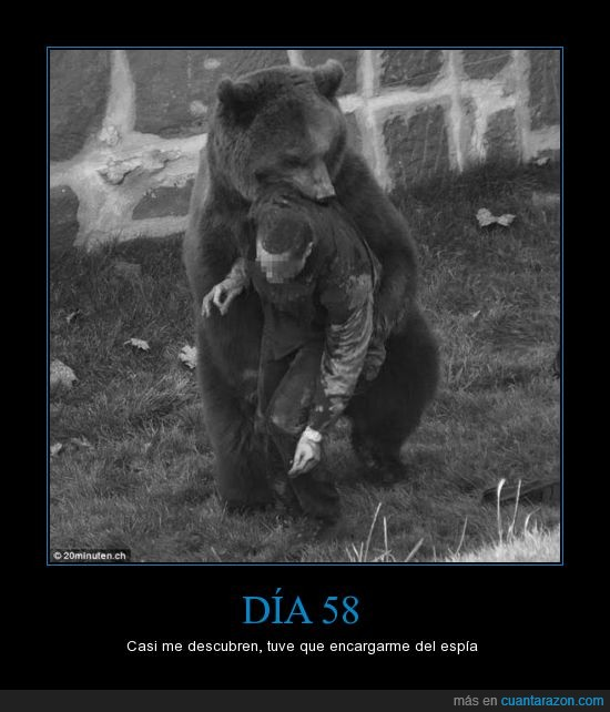 ataca,espia,historia,matar,oso,real