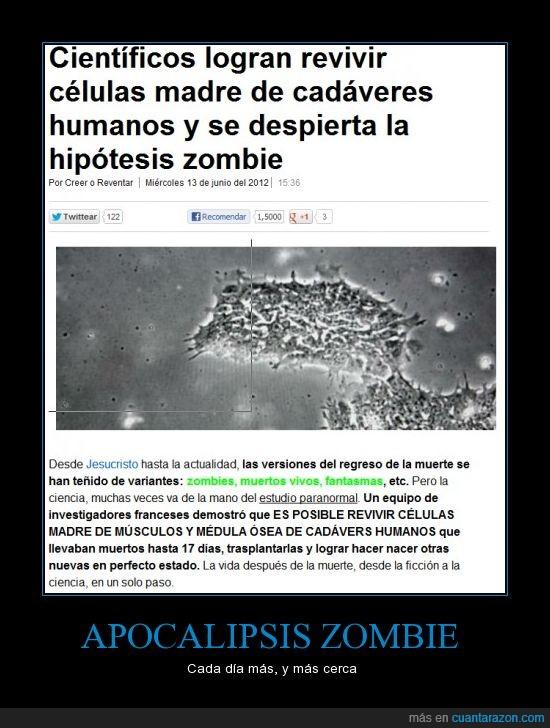 a,apocalipsis,cientificos,esto,leyendo,morir,muerte,que haces,revivir,vamos,zombie