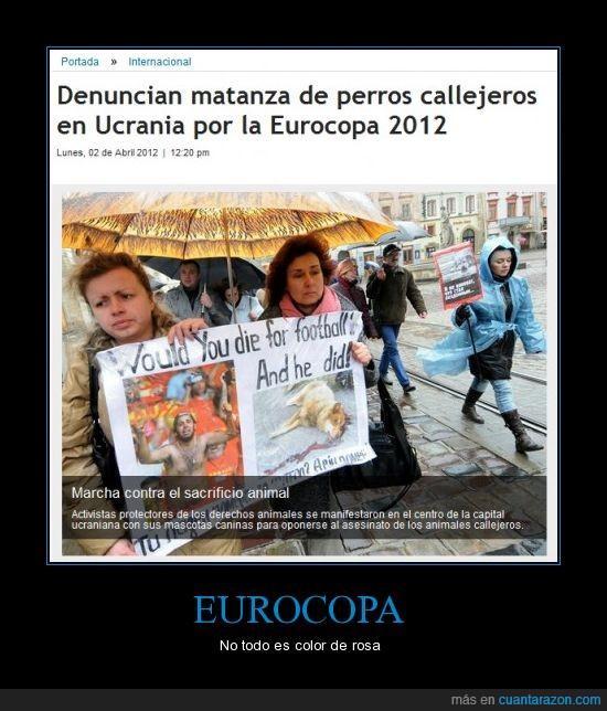 callejeros,eurocopa,matanza,perros,protesta,ucrania