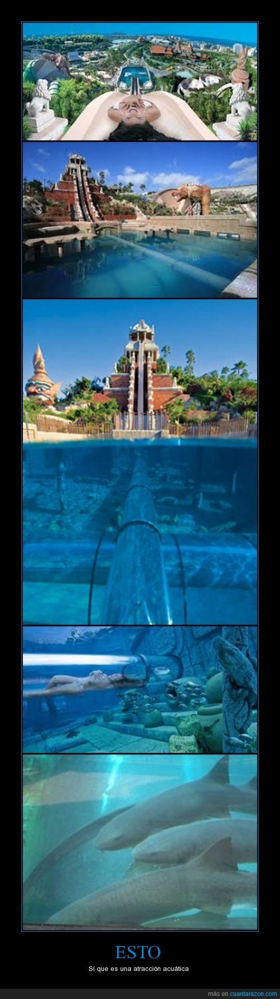 Siam park,tenerife,tiburones,tower of power