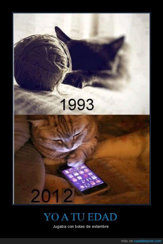 1993,2012,bola,edad,estambre,gato,iphone,jugar,telefono